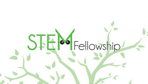 STEM Fellowship logo